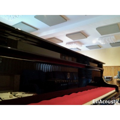 Absorbentes Regular Panel 60.4 Pure Beige y difusores Fussor 3D en el techo.