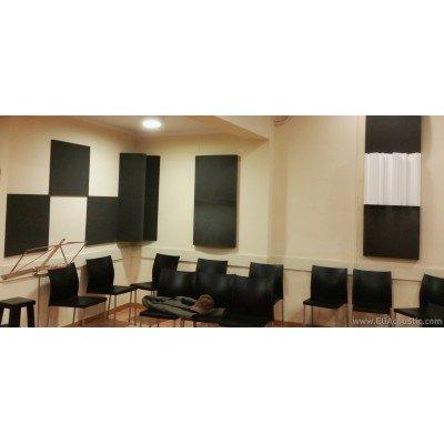 EliAcoustic Regular 60.2 First. Panel Acustico de espuma acustica