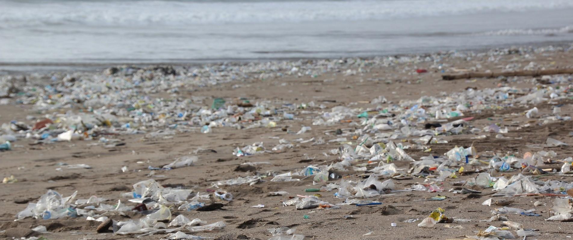Contaminacion plasticos mares